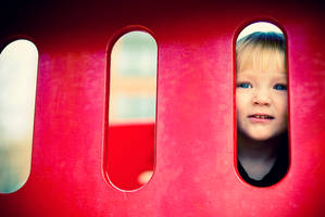 Peering from Safety by photosynthetique