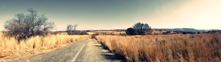 Bush Panorama by 3hanphoto