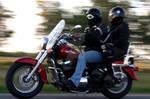 Motorbikes in Action v4