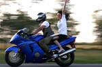 Motorbikes in Action v1