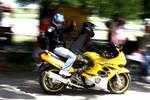 Motorbikes in Action