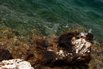 Trip to Ithaki - Greece v44