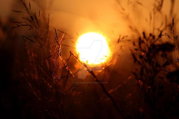 Sunset Inspire Me.