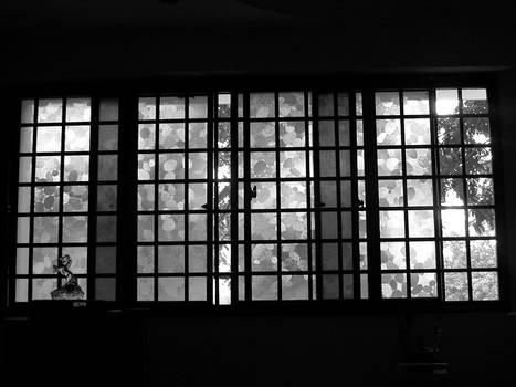 home window
