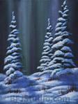 Snowy Pines Study