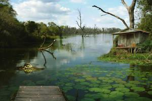 Swamp by JaKlaRo