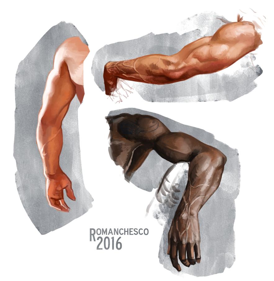 Male hand study by RealRomanchesco