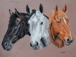 The three mares by Aleerakz