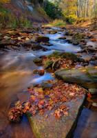 Autumn River 2 by RichardMacDonald