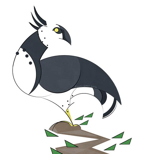Harpy by Splash-Otter