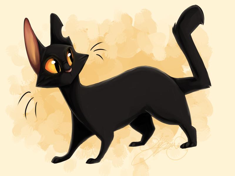 Black Cat by FattCat