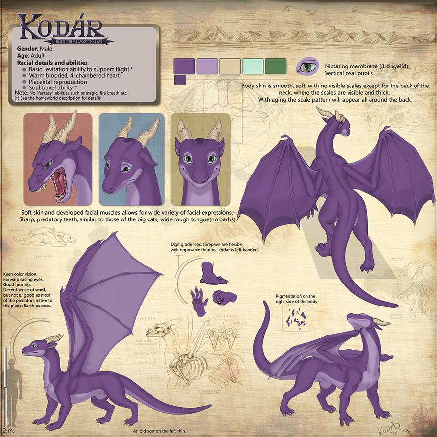 kodar the dragon character reference sheet by kodardragon on