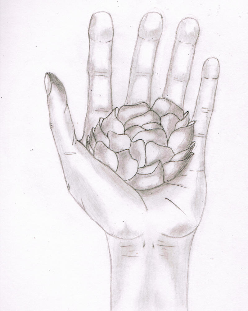 Hand holding a flower by jmarcelino143235 on deviantart for Hand holding a rose drawing