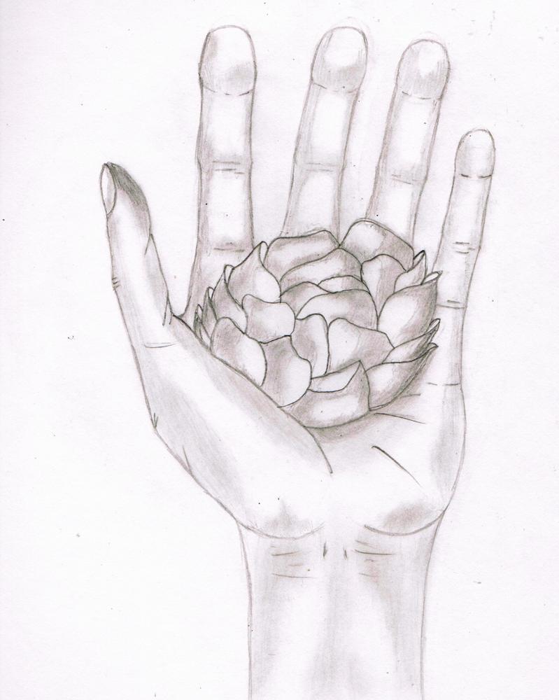 hand holding a flower by jmarcelino143235 on DeviantArt