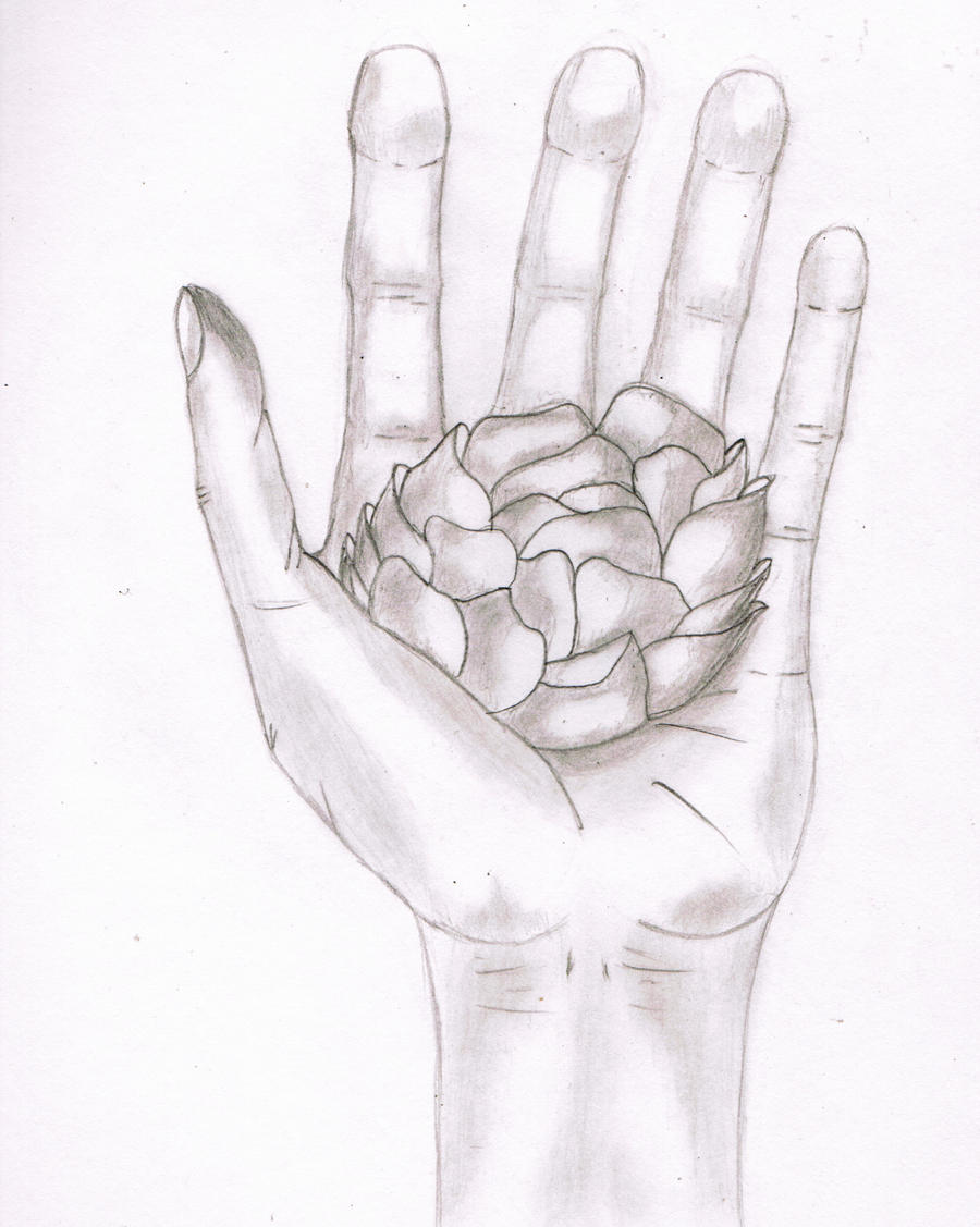 hand holding a flower by jmarcelino143235 on deviantart