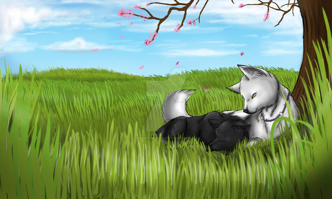 Inuyasha and Kagome by IfreakenLoveDrawing