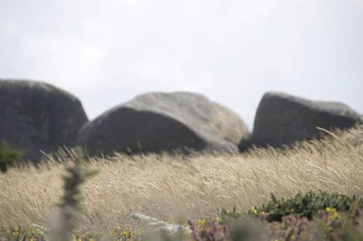 Three Stones and dancing hay