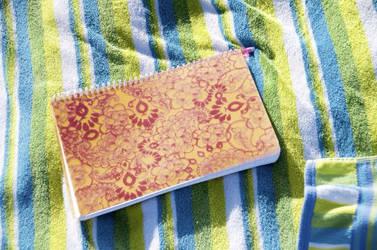 Vacation Diary