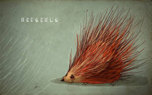 hedgehog by sedatgirgin