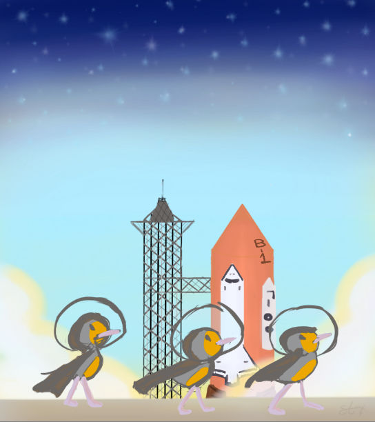 Space Birds!!