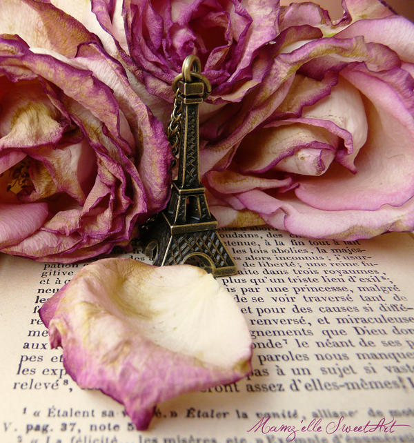 Paris in Love by Mamzelle-SweetArt