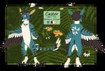 Castor ref [Current]