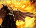 Ichigo save rukia