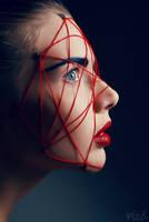 Red.Net II by FlexDreams