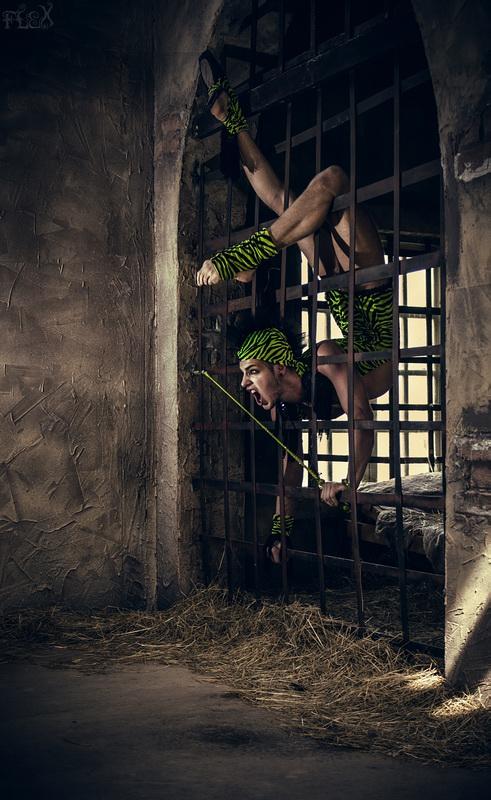 Circus by FlexDreams