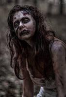 Walking Dead by FlexDreams