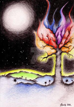 Aura of a Tree