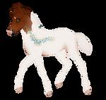 7780 Padro Foal Design