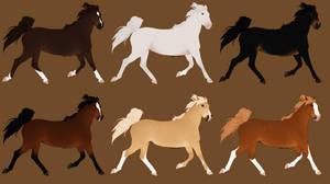 Thoroughbred Designs - 0/6 Available!