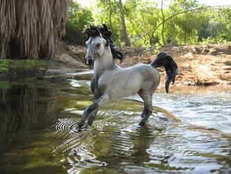 Breyer Horse Water 001 by StormyDragonRider