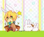 Friggin Bunnies