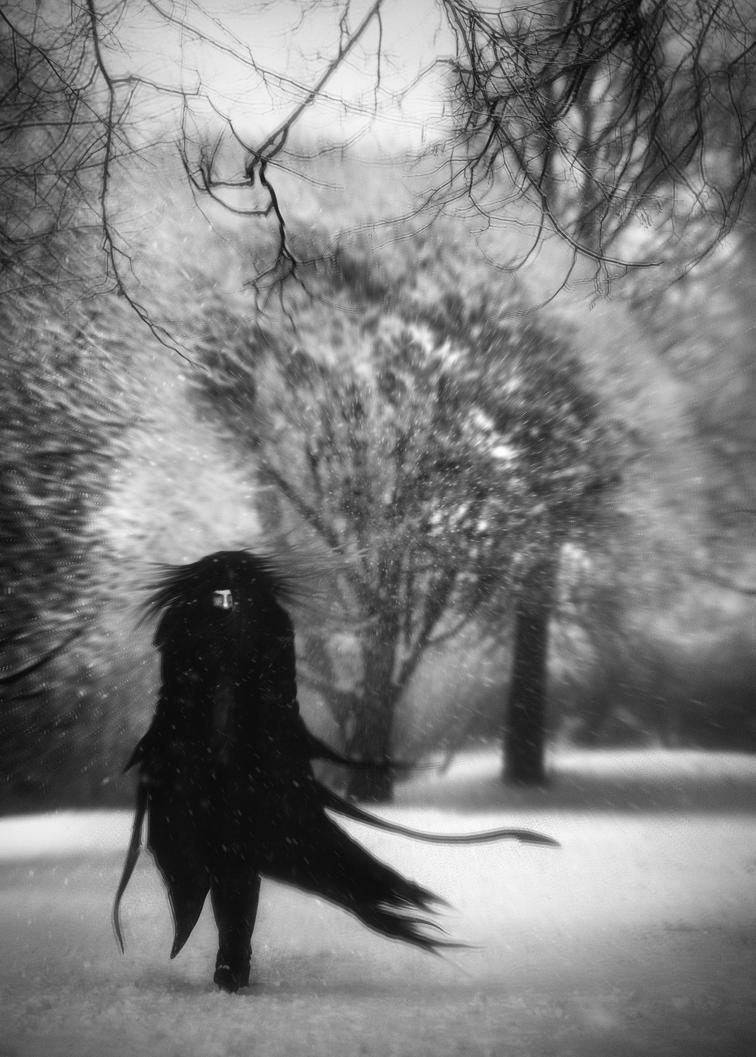 Snow by WWWest