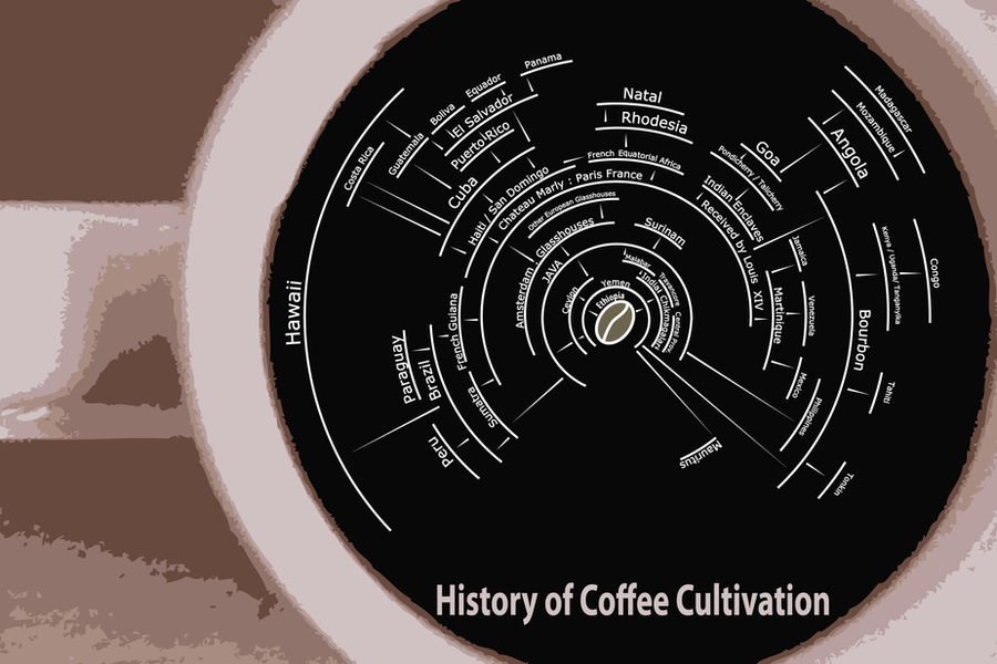 History fo Coffee Cultivation by Pzulbox