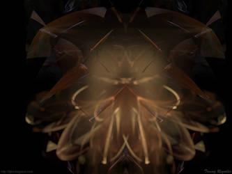 Fractal Bloom by tijir
