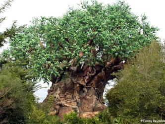 Tree Life by tijir