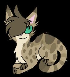 Cat Doodle 1