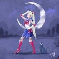 Comical Sailor Moon