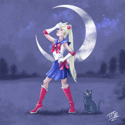 Comical Sailor Moon