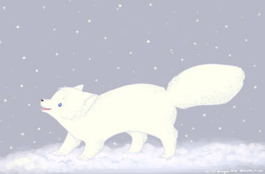 Snow Storm by Rooncakes