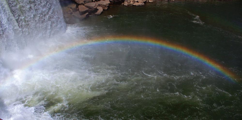 Rainbow...where is my gold? by Lucifeil