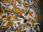 sci-stock - cigarette butts 1