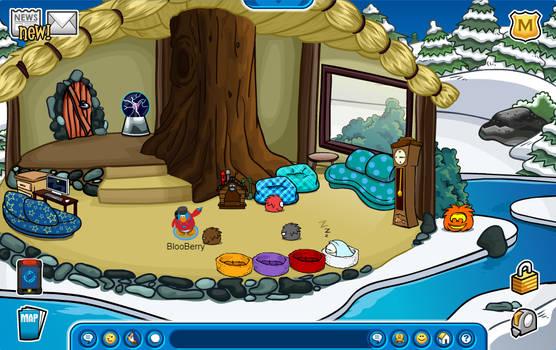 Cozy new igloo!