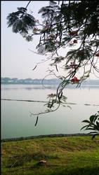 Lake by Juniper85