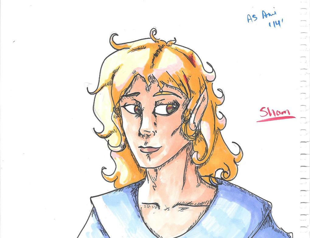 Shamwow by TheHornedAngel