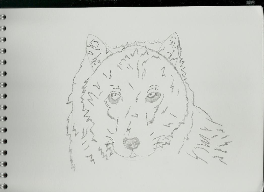 Wolf V2 by Jaffa6