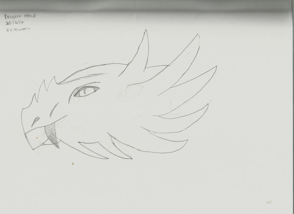 Dragon Head by Jaffa6